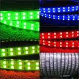 변화 RGB 2중 선 LED 지구 120LED/M 110V 220V를 착색하십시오