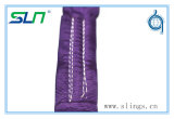 Wstdaの標準の2017 2600lbsポリエステル円形の吊り鎖