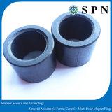 De ceramische Ringen van de Magneet van Permant van het Ferriet voor het Stappen Motoren