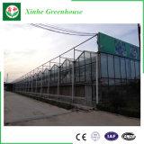 野菜栽培のためのVenloのタイプガラス温室