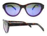 주문 색안경 아세테이트 색안경 디자이너 색안경