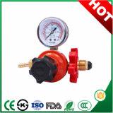 De algemene Regelgever van de Gasdruk met Debietmeter en Economiser
