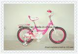 Kinder Fahrrad, Kind-Fahrrad des Verkaufs-2016hot