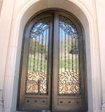 Porte d'entrée extérieure de fer travaillé de garantie en métal avec la glace