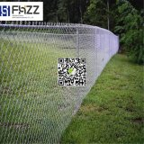 Quente-Venda galvanizada & da ligação Chain do PVC cerca revestida