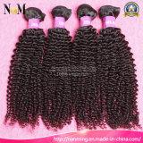 Зашейте в волосах волос 8A девственницы Weave монгольских Kinky курчавых