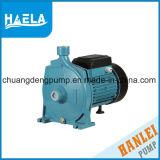 100% Cpm-zentrifugale Wasser-Pumpe des kupfernen Draht-1HP