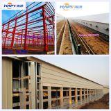 De Bouw van het Landbouwbedrijf van het gevogelte met Ontwerp en Installatie voor Één Einde