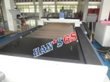 machine de découpage de laser de fibre de la commande numérique par ordinateur 1000W/machine de découpage de plasma tôle