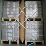 Documento e sacchetti di aria gonfiabili di plastica del pagliolo