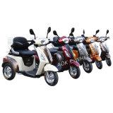 Tricycle électrique à moteur 500W pour les aînés (TC-018)