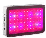 Voller Spektrum Dimmable 300W PFEILER LED wachsen für Pflanze hell