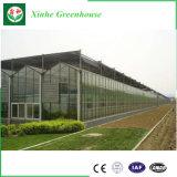 Vidro/Vidro Temperado oco de gases com efeito de alumínio para a agricultura/comercial
