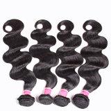 マレーシアの速い出荷のぬれた波状のマレーシアの毛は編む