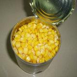 Grain en boîte par qualité de maïs de Chine