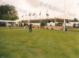 Schönes Ceremony Marquee Large Event Tent mit Waterproof PVC
