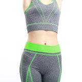 Йога установленное Yjf10301025 повелительниц пригодности Sportswear дешевых женщин OEM установленная