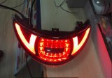 Lampade Lm-111 di arresto/autorizzazione LED dell'indicatore luminoso della coda del motociclo con la certificazione di E4 3c
