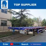 Versandbehälter-Transport-Schlussteil des Titan-Fahrzeug-40FT für Verkauf