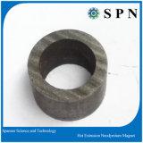 Magnete permanente di NdFeB/magnete urgente caldo del neodimio