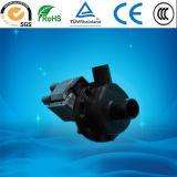 30W/45W/50W/65wwashing Clase F de la bomba de drenaje de la máquina