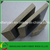 Madera contrachapada fenólica de la cara de la película de la base de la madera dura del pegamento