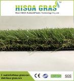 4商業装飾の庭のためのカラー35mm美化の総合的な草