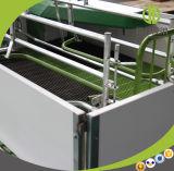 Altos embalajes de parto usados de la tarifa de supervivencia del cerdo durable