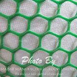 عشب تقوية بلاستيك شبكة
