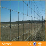 Joint de charnière galvanisé haute résistance ferme d'élevage pour les herbages de clôture