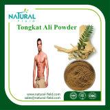 성적인 건강 Tongkat 알리 루트 추출 200:1를 위한 원료