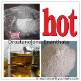 Polvere steroide CAS di Drostanolone Enanthate Masteron Enanthate: 472-61-145 aumento del formato del muscolo