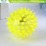 La sfera infiammante dell'istrice illumina in su le sfere di rimbalzo sensoriali della novità appuntita