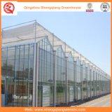 Estufas de vidro Growing da flor/fruta/vegetais com sistema do pára-sol