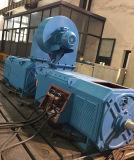 Motor elétrico de baixa velocidade de tração de veículo Motor de indução de motor de engrenagem CC