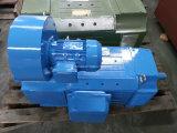 Электрический двигатель высокой эффективности чугуна Ie3 4pole IEC