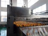 2-50TPHによって集中されるジュースのオレンジ処理の機械装置