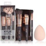 L'insieme di spazzola di Kylie per trucco delle estetiche spazzola la strumentazione di bellezza