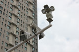 Intelligente Nachtsicht IR-Überwachungskamera der Geschwindigkeit-PTZ 100m