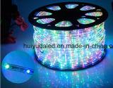 Cuerda al aire libre y de la luz LED de luz/TIRA DE LEDS de luz/Luz de Neón/Luz de Navidad de luz/Vacaciones/Hotel/Bar de la luz de la ronda de la luz de dos cables de 25 LEDs de color rojo de 1,6 W/M DE TIRA DE LEDS