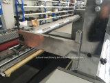 Máquina termal caliente del laminador de la película de Fmy-D1100 Glueless con el automóvil. El cubrir