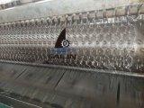Engranzamento de fio galvanizado sextavado da galinha de Sailin