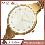 Horloge van het Kwarts van de Elegantie van het Roestvrij staal van het Glas van dames het Minerale