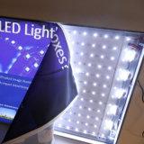 ファブリックLEDによってバックライトを当てられる額縁のバックライトを当てられたライトボックスの広告
