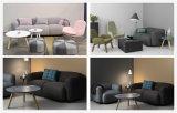 Tela moderna Sofa-Hc111 da sala de visitas da mobília Home