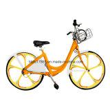 사슬 전송 공중 자전거 또는 여가 도시 자전거 공유