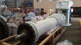 Pompa verticale/pompa verticale della turbina/pompa verticale centrifuga