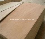 madeira compensada do anúncio publicitário da classe da mobília de 1220X2440/1250X2500mm