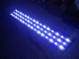 47 pouces blanc + bleu pour la croissance des récifs coralliens LED Aquarium Lights