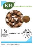 Polysaccharides purs d'extrait de champignon de couche de Shiitake 10%-40%